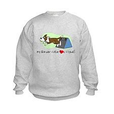Brown Border Collie Flyball Sweatshirt