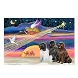 Xmas Star & Newfie trio Postcards (Package of 8)