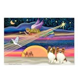 Xmas Star/2 Papillons Postcards (Package of 8)