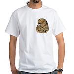 Modena Pigeon White T-Shirt