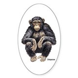 Chimpanzee Monkey Ape Oval Decal