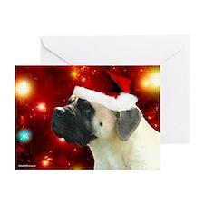 Christmas Spirit Greeting Cards (Pk of 10)