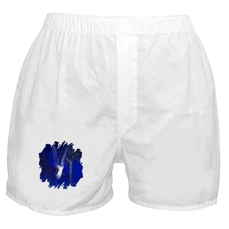 Iridescent Angel Boxer Shorts