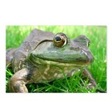 Bull Frog Postcards (Package of 8)