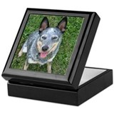 Blue Heeler Keepsake Box