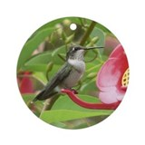 Humming Bird<br>Ornament (Round)