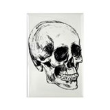 Cool Skull Rectangle Magnet (100 pack)