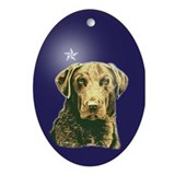 Chesapeake Xmas Star Oval Ornament