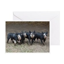 Piggies Greeting Card