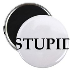 Stupid Magnet