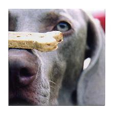 Got Cookie? Tile Coaster