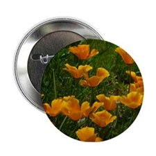 "California Poppies 2.25"" Button"