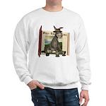 Daisy Donkey Sweatshirt