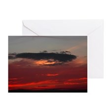 "Cozumel ""Night Dive"" Greeting Cards (Pk of 20)"