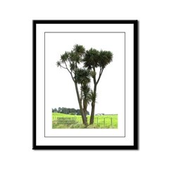 NZ Cabbage Tree Framed Panel Print