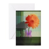 Gerber Daisy in Green Greeting Cards (Pk of 10