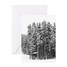 Snow in the Rocky Mountains Greeting Card