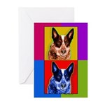 Blue Heeler Greeting Cards (Pk of 10)