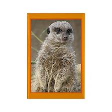 Meerkat Rectangle Magnet