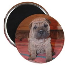 "cutepei 2.25"" Magnet (10 pack)"
