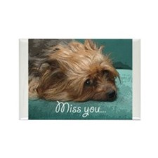 SILKY terrier Dog - Rectangle Magnet