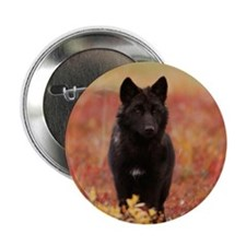 "Autumn Wolf 2.25"" Button (100 pack)"