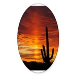 Saguaro Sunset Oval Sticker