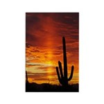Saguaro Sunset Rectangle Magnet (100 pack)
