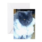 Exotic Persian Cat Greeting Cards (Pk of 10)