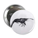 "Tiger Shrimp 2.25"" Button (100 pack)"
