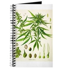Cannabis Sativa Journal