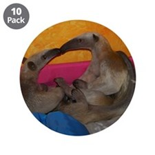 """Cute Exotic pet 3.5"""" Button (10 pack)"""