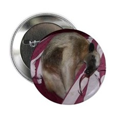 """Cool Exotic pet 2.25"""" Button (100 pack)"""