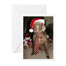 Season's Greetings Greeting Cards (Pk of 10)