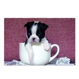 Boston Terrier Teacup Design Postcards (Package of