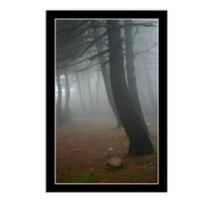 Mysterious Mist Postcards (Package of 8)