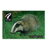 Badgers Forever Badger Postcards (Pack of 8)