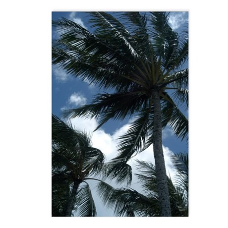 Hawaiian Palm Trees Postcards (Package of 8)