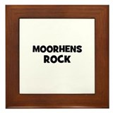 Moorhens Rock Framed Tile