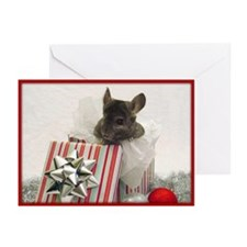 Chinchilla Holiday Cards (Pk of 20)