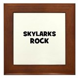 Skylarks Rock Framed Tile