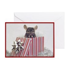 Chinchilla Holiday Card