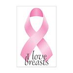 I Love Breasts Ribbon Mini Poster Print
