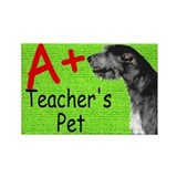 Irish Wolfhound Magnet - Teacher's Pet
