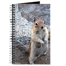 Chipmunk Journal