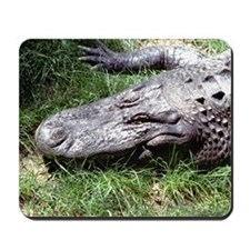 Alligator Head Mousepad
