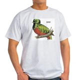 Quetzal Rain Forest Bird (Front) Ash Grey T-Shirt