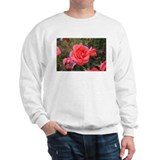 Pink Rose (A) Jumper