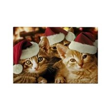 Christmas Kittens Rectangle Magnet