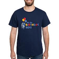ADULT SIZES - birthday boy T-Shirt
